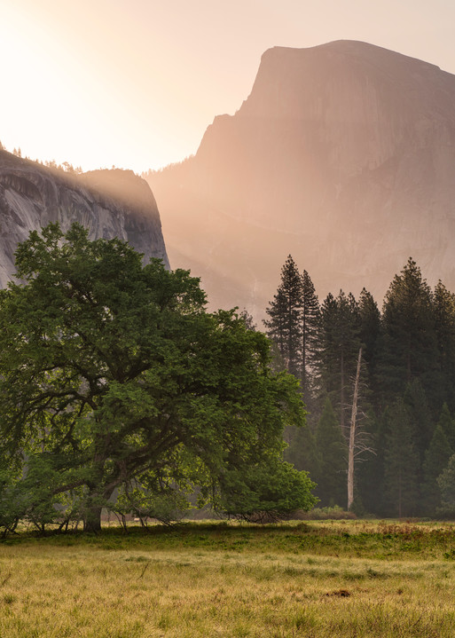 Daybreak in Yosemite Valley