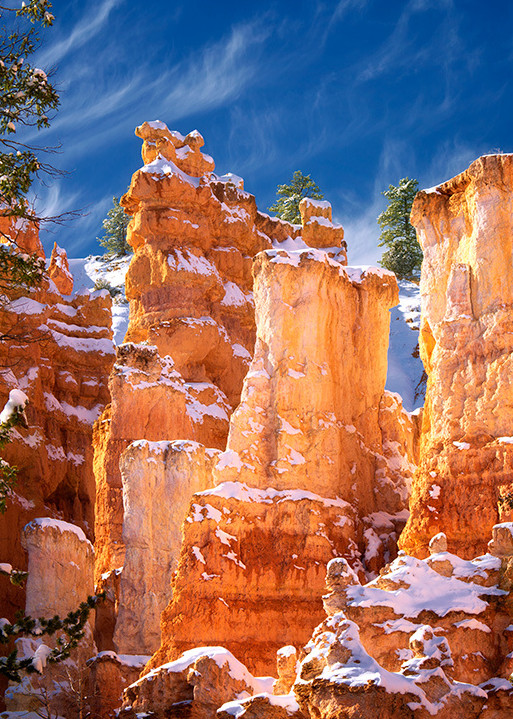 Snow In Bryce Canyon National Park, Utah Art | Fine Art New Mexico