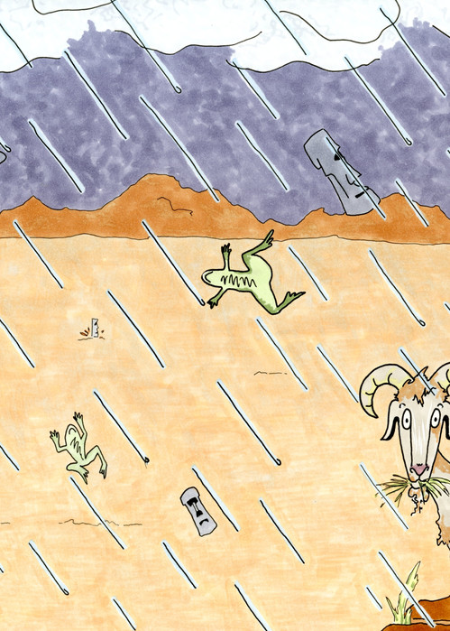 It's Raining Heads and Frogs