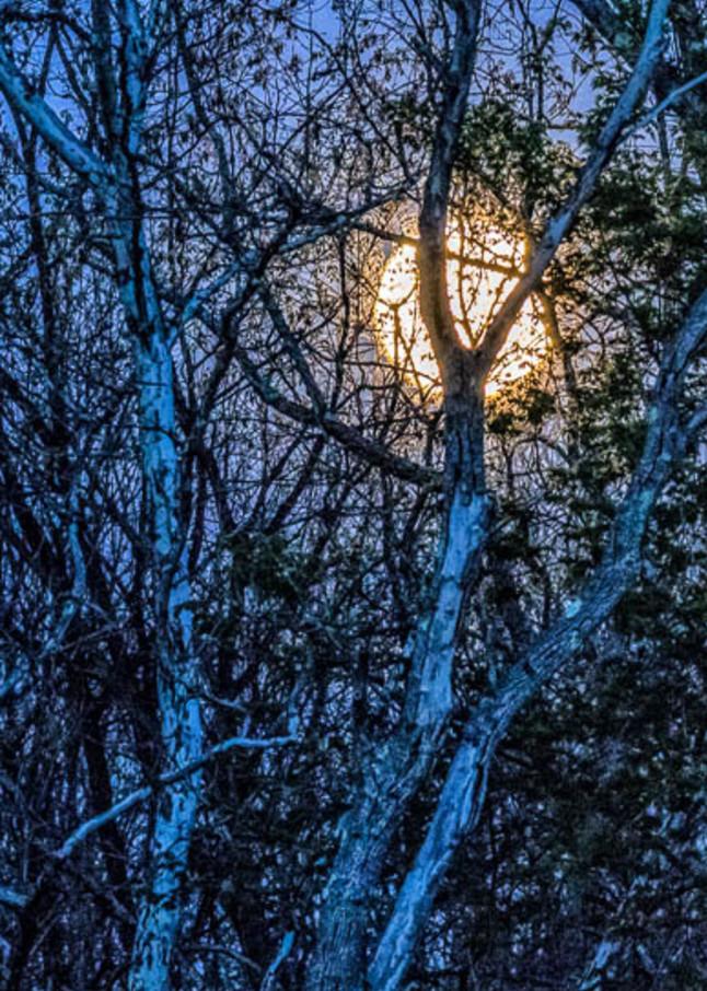 fine art photograph Full Moon at Duck Pond