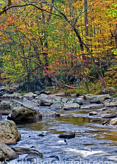 fine art photograph of Fall on the Brandywine