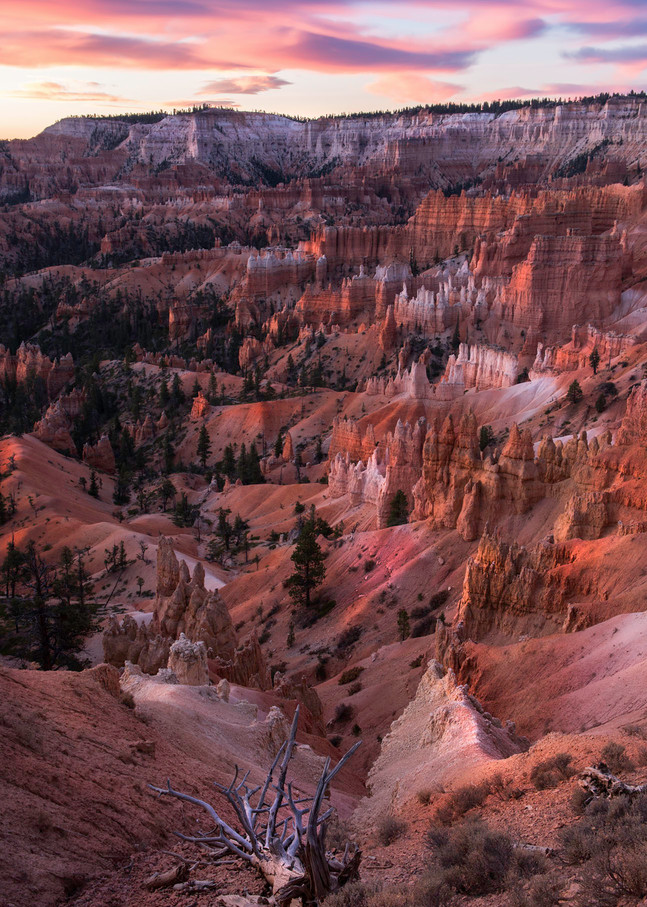 Scenic Landscape photography from Bryce Canyon N.P. Utah/Thomas Schoeller fine art prints