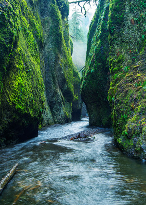 Misty Canyon, Pacific Northwest Fine Art Photography Print