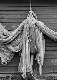 Fisher Art