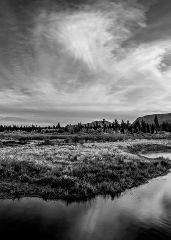 Tallac Meadow Black & White Lake Tahoe Print