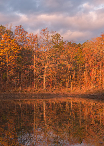 Fall Colors | Susan J Photography | Beautiful oranges and yellows