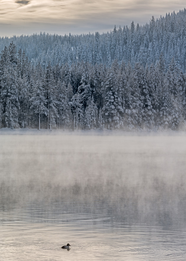 Donner Lake Mist Art | The Carmel Gallery