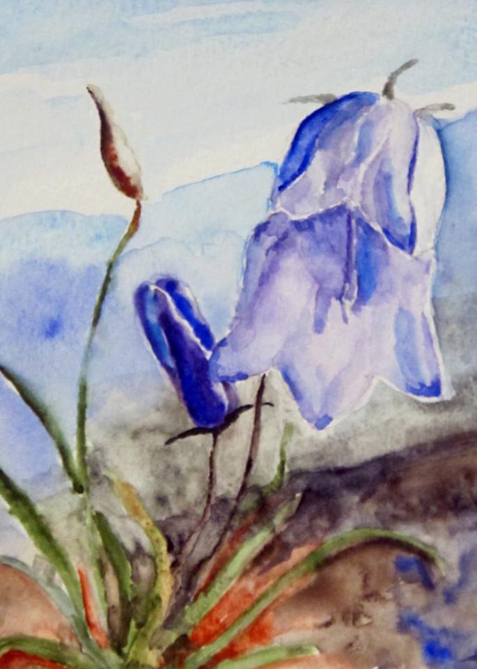 Greenland Bluebells Art   David Beale