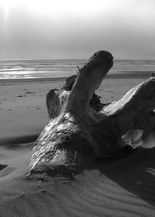Abandoned   Oregon Coast Photography Art | Photoissimo - Fine Art Photography
