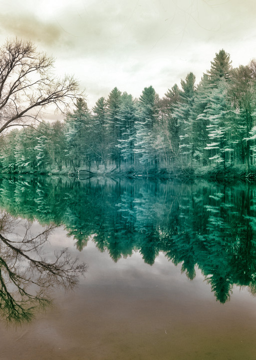 A green infrared Stumpfield Marsh image