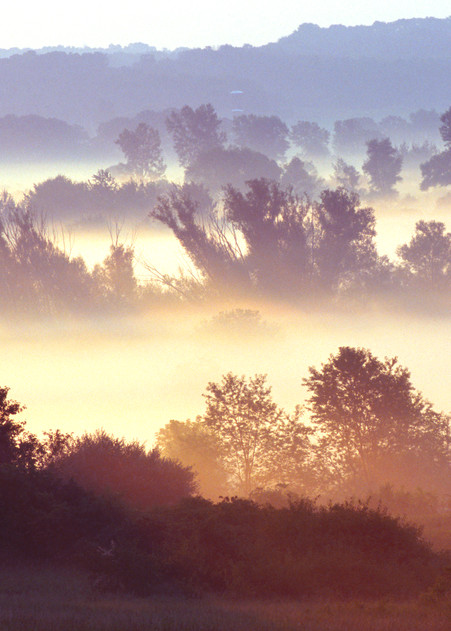 Heavy layers of fog lit by an early morning sun - fine art photograph