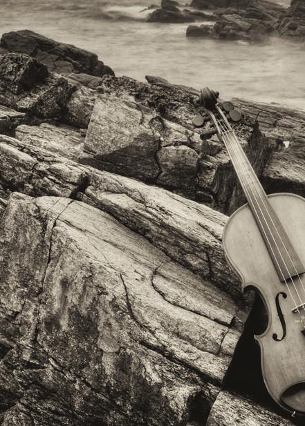 Sandras Song Ii Art   Instrumental Art