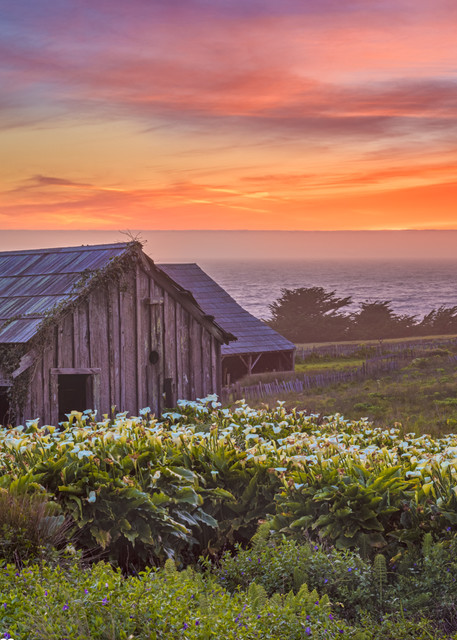 Sea Ranch photography