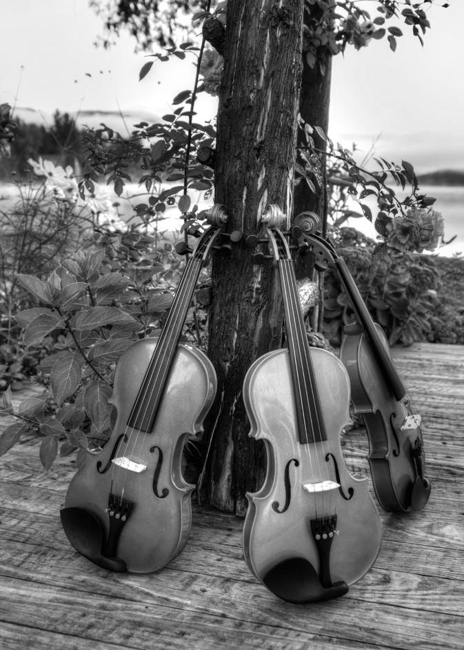 Violin Trio Ii Art | Instrumental Art