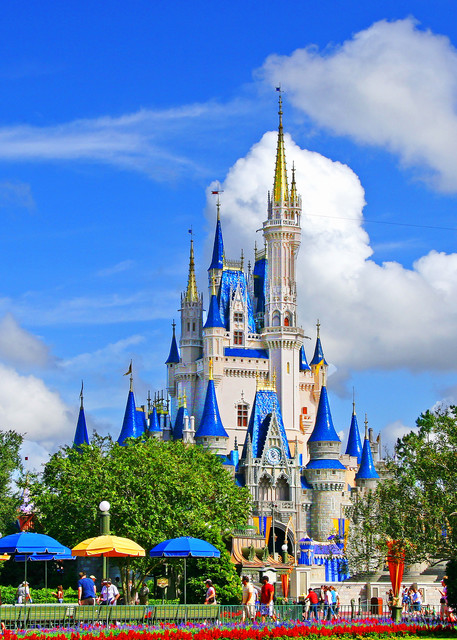 Magic Kingdom - Disney Wall Art   William Drew Photography
