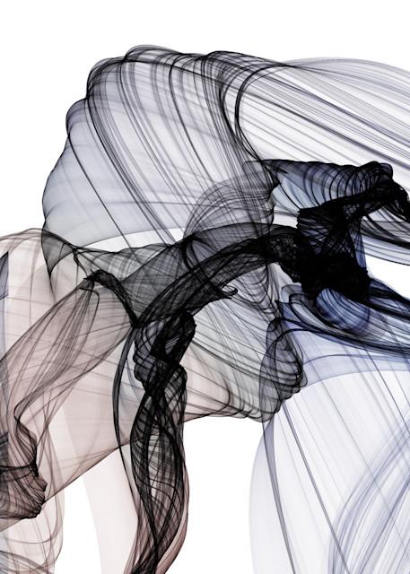 Orl 10322 10 133 The Invisible World Movement20 37 07 Art | Irena Orlov Art