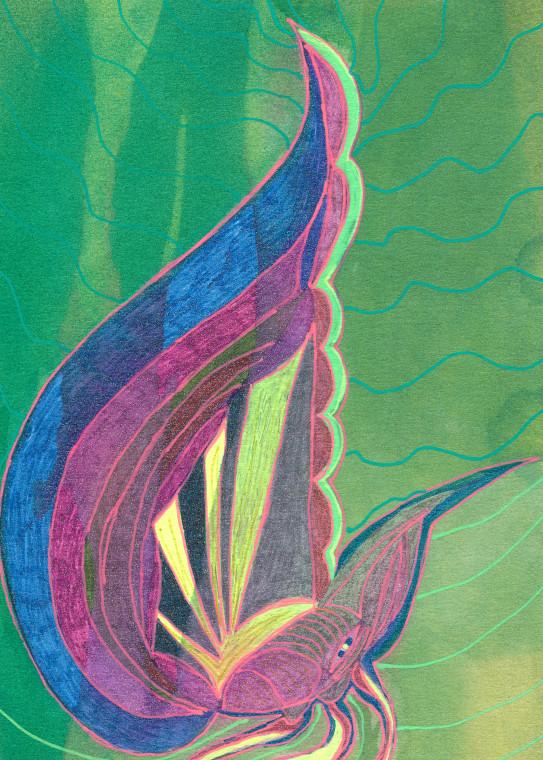 Snail 2 Art   Pam White Art