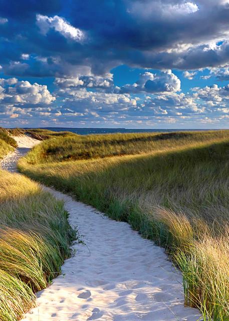 """""""Philbin Beach Path"""" Martha's Vineyard coastal beach art"""