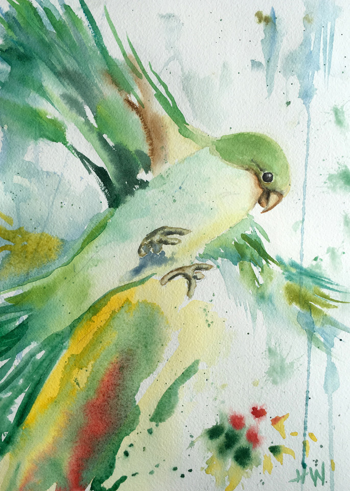 Parakeet watercolor painting for sale