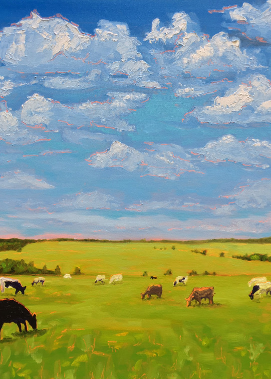 Cows Under Clouds | Rural VA or NC Landscape of Cows in Green Field