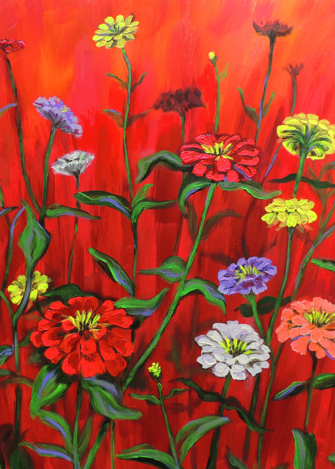 Original Print of IREDescent Zinnias on a Red Background
