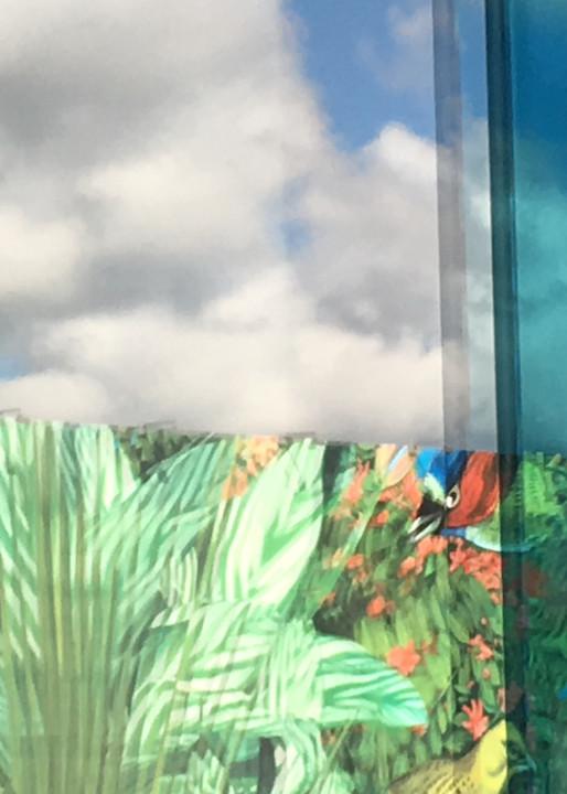 Inspiring Rich Color Miami Reflection Photo. Richard London