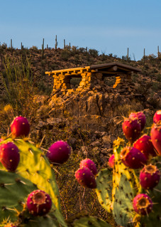 Prickly Pear Lookout