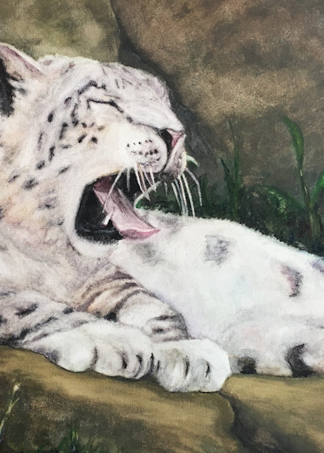 Snow Leopard for 12x18