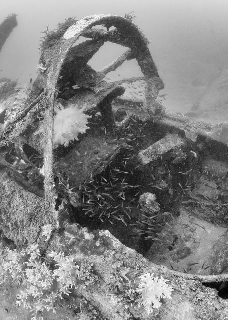 Douglas Bomber Plane Wreck Cockpit, Solomon Islands