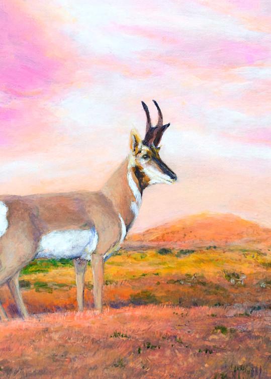 Pronghorn Antelope Art   Charles Wallis