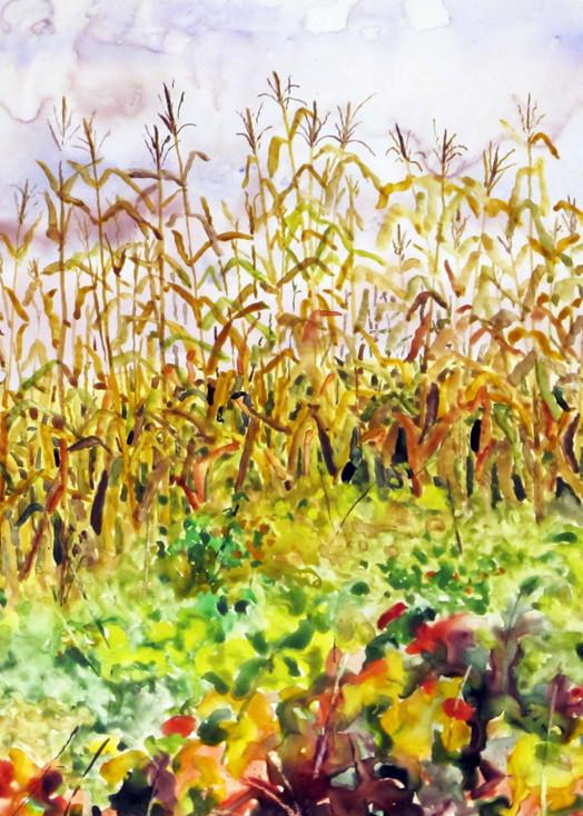 Edge Of Corn Field Art | David Beale