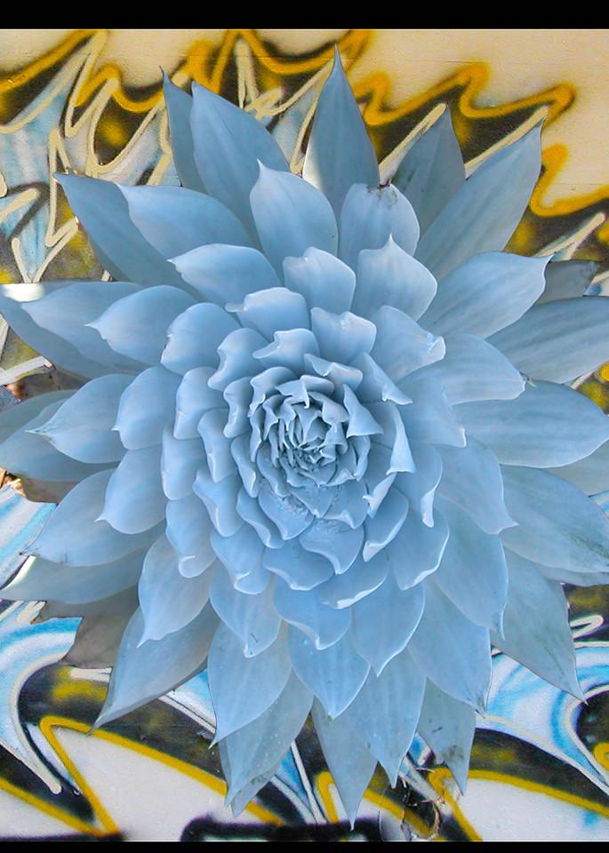 Blue Juxtapoz Photograph for Sale as Fine Art