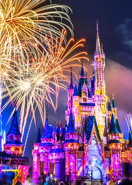 Happily Ever After 5 - Disney Art Prints | William Drew