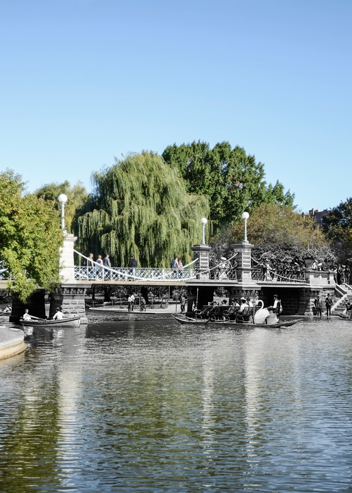 Lagoon Bridge, Boston Public Garden Art   Mark Hersch Photography
