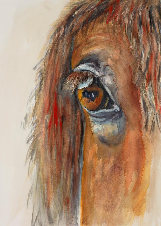 Reflections Art | Debra Bruner Studio