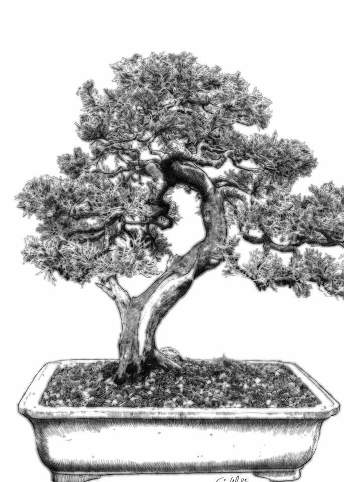 "Digital etching by Eric Wallis, inventor of the technique, titled, ""Bonsai Two."""