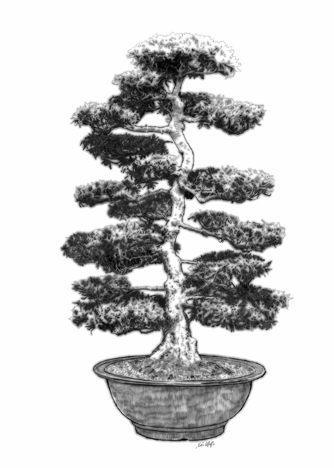 "Digital etching by Eric Wallis, inventor of the technique, titled, ""Bonsai Four."""