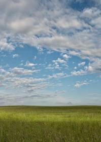 Grassland Photography Art   Craig Edwards Fine Art Images