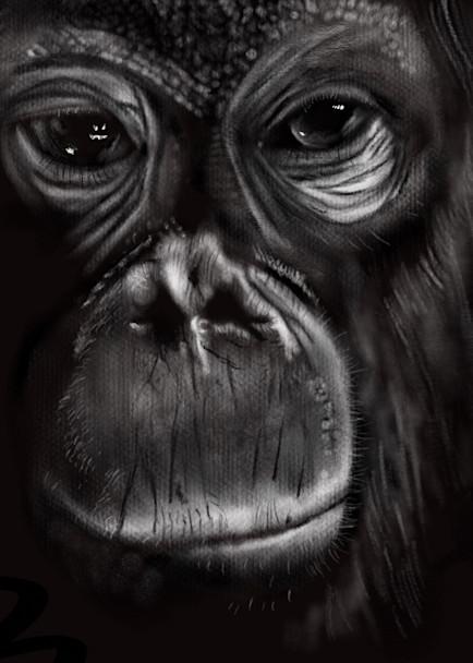 Monkey Art | Dave Fox Studios