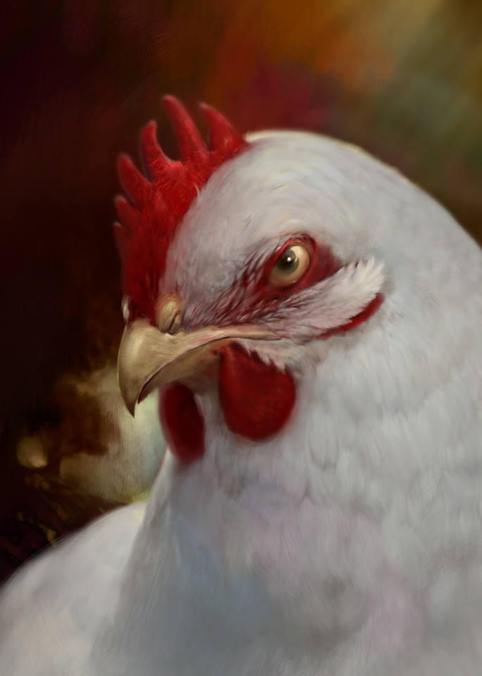 Fine Art Prints of Artist Burton Gray's painting of a chicken.