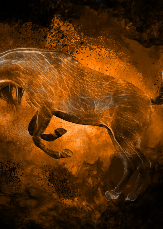 Equine Inferno 3 Photography Art | Images2Impact
