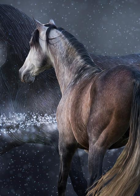 Equine Spirit Photography Art | Images2Impact