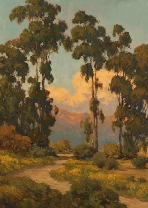 Trail Through Eucalyptus