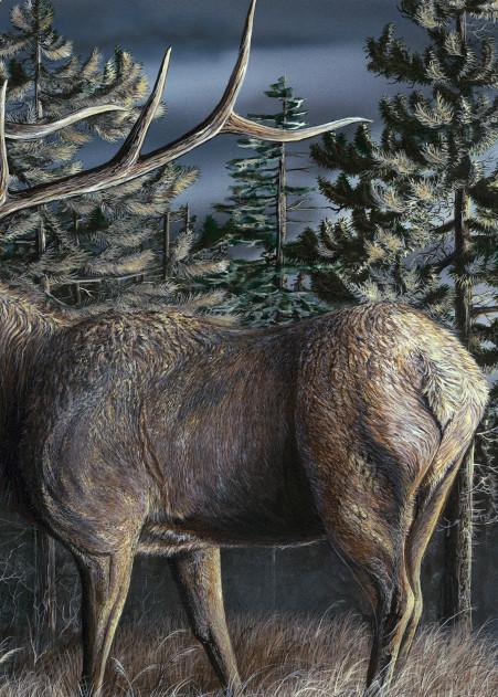 Whistling Pines Art | Amy Keller Rempp Art