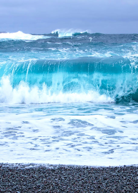 Middle Cove Wave