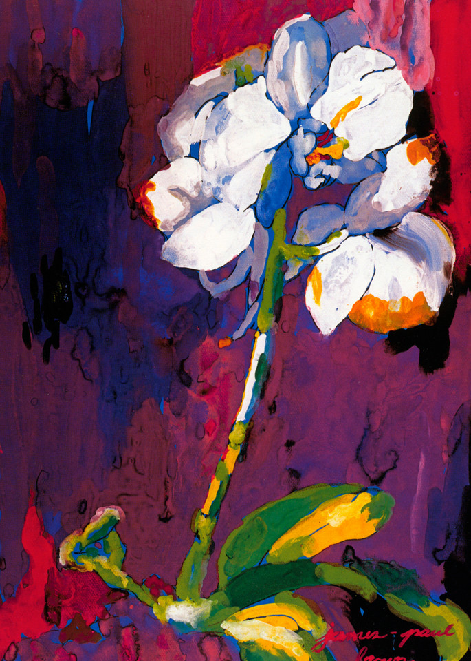 Orchid Art   Artiste Winery & Tasting Studio