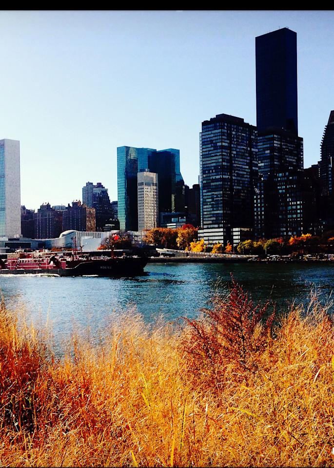 Roosevelt to Manhattan Skyline Instagram Print, Click!
