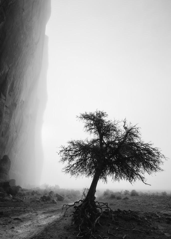 Canyon Solitude Art | Third Shutter from the Sun Photography