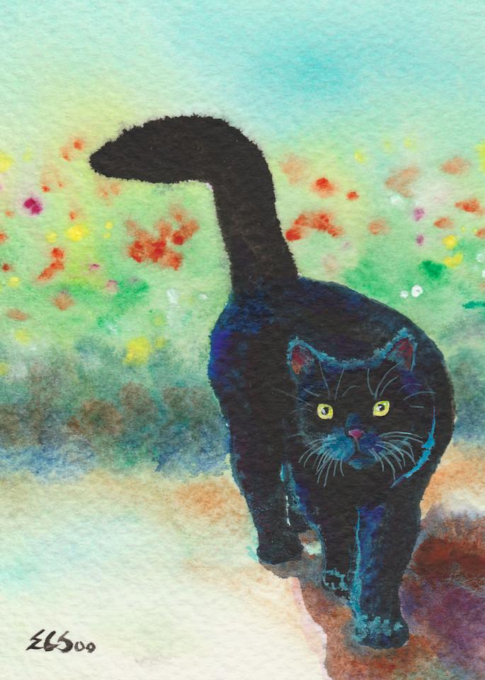 Black Cat Strolls In The Garden