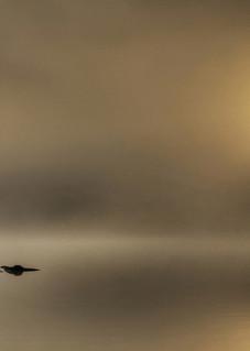 Adirondack Summer Sunrise Art | Michael Sandy Photography